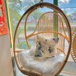 Fotel wiszący rattanowy
